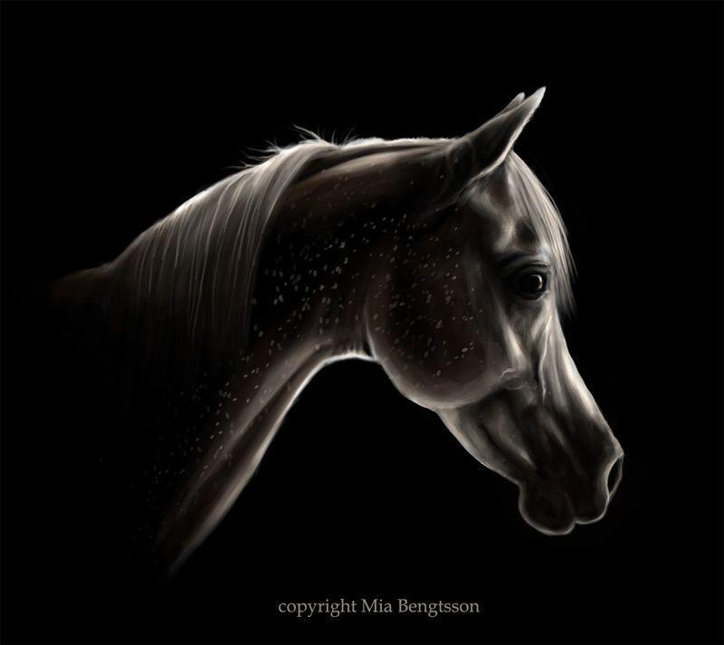 Mia Brengtsson --> Ziggy Stardust